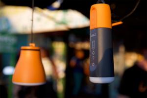 mango Lamp and Combo