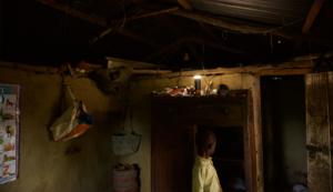 mango Combo lights home